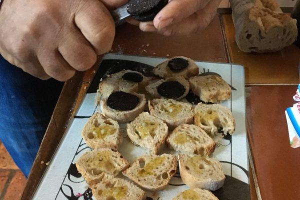 Сбор чёрных трюфелей